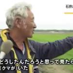 人の住む市街地周辺にまで現れるようになった北海道の若いヒグマたち