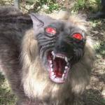 農作物を荒らすイノシシ対策の『オオカミのカカシ』が怖すぎる!(千葉県木更津市)
